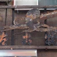 takoyaki19021.jpg
