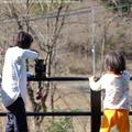 yamagoya19041.jpg