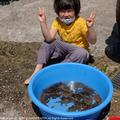 kanikani20061.jpg
